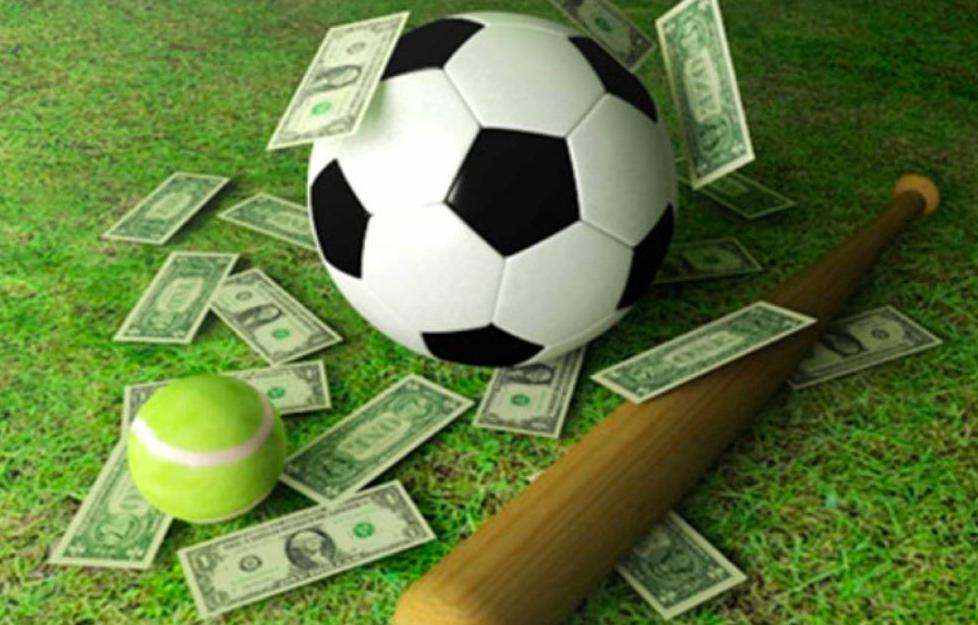 Как правильно выбрать букмекера для ставок на спорт?